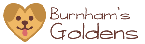 Burnham's Golden's